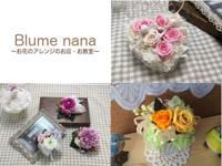 Blume nana